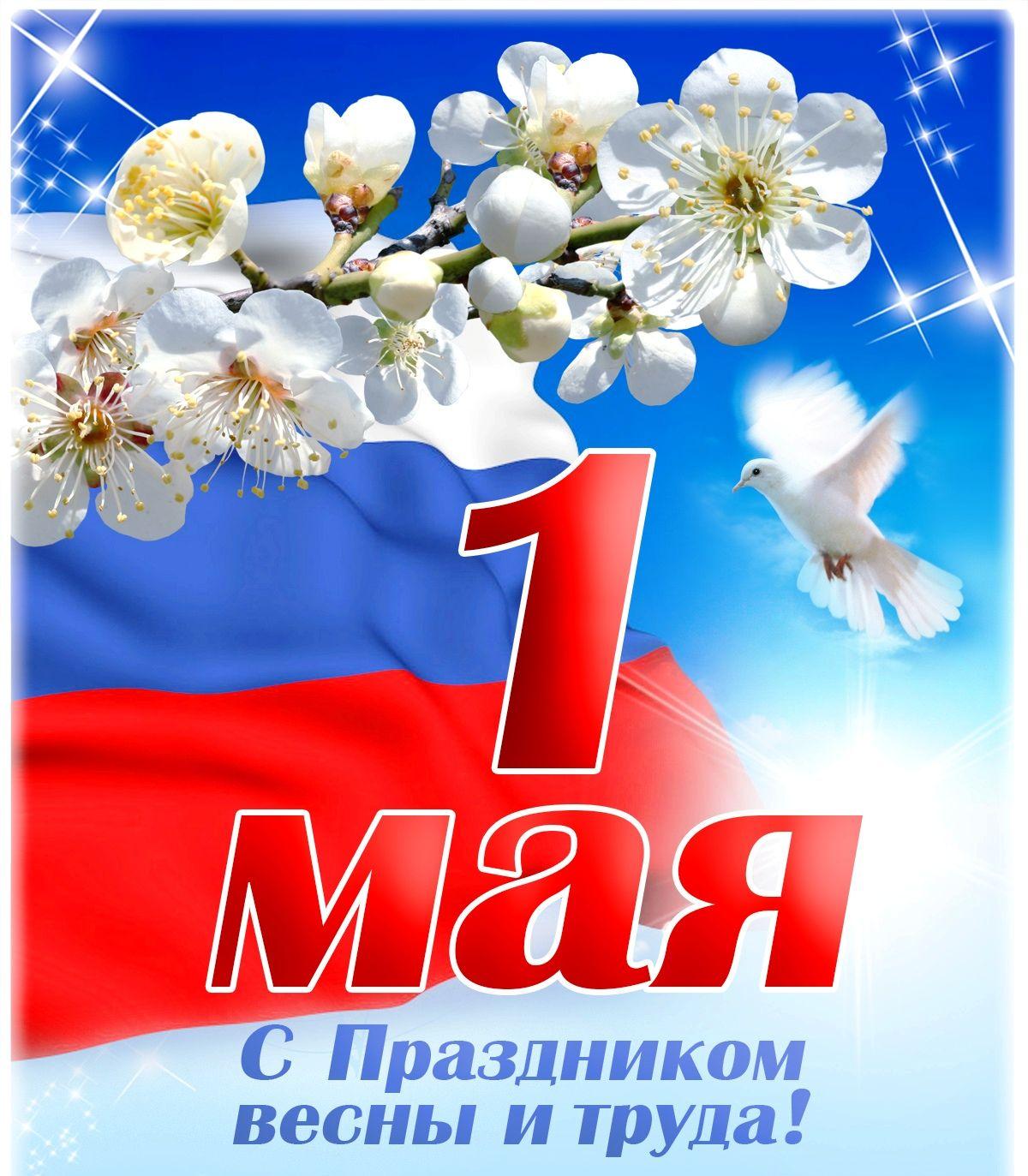 Поздравление Главы администрации Усть-Джегутинского муниципального района с Днем Весны и Труда